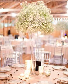 inexpensive centerpiece Elegant New Orleans wedding | Real Weddings and Parties | 100 Layer Cake @Rene Artale Stroud