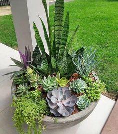 Easy Garden, Garden Art, Garden Beds, Landscape Edging Stone, Landscape Design Plans, House Landscape, Pot Jardin, Succulents Garden, Succulent Arrangements