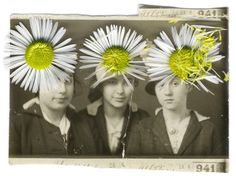 Julia Borissova is the Russian artist behind the series Running to the Edge, which explores the subject of the first wave of Russian emigrants in teh 20's. Combining old pictures and collages of flowers' petals, she did a whole work of destruction to make anonymous the people on the each photo. The flowers are here to hide an identity but also to modernize through color these pictures in sepia and black and white.