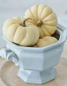 Decoration idea, white pumpkins