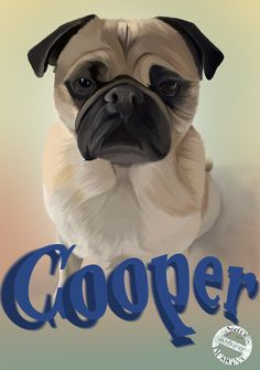 Cooper #pug #Sjelly #procreate #procreatedrawing Create Drawing, Pugs, Design, Pug Dogs, Pug, Pug Life