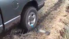 La tua auto è rimasta impantanata? Il trucco per liberarla è semplice