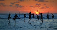 "The Andaman Island.   Pictured: the ""stilt fisherman"""