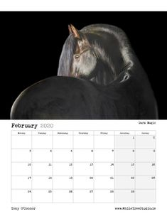 A little Limited Edition luxury for the horse enthusiast who already has everything! Art Calendar, Equine Art, Life Is Good, Fine Art Prints, Sketches, Store, Artist, Tent, Art Prints