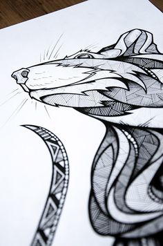 LassRollen // Animals of Berlin on Behance