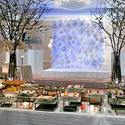 Brooklyn Marriott Wedding Cocktail Reception-One of our Grand Ballroom salons is the perfect venue for a wedding cocktail reception — or any type of reception or event where elegance, style, and sophistication are on the agenda.