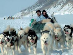 Poznávací zájezdy Grónsko