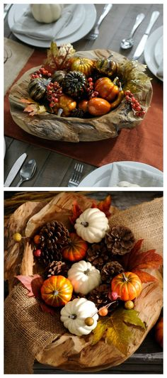 Grab that woven basket out of the attic and create a centerpiece with our Harvest Filler. Our transform your lanterns into fall decor by filling them with Pumpkin and Pine Cones Filler!