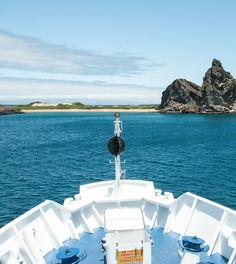 "Blogpost: Galapagosinseln hautnah: Inseltour mit der Yacht ""La Pinta"" (2)"
