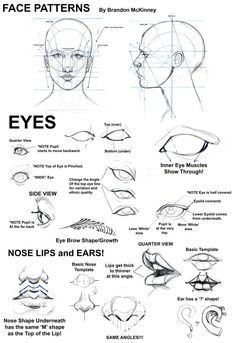 Found some basic drawing tutorials, and thought it would be nice to share with…