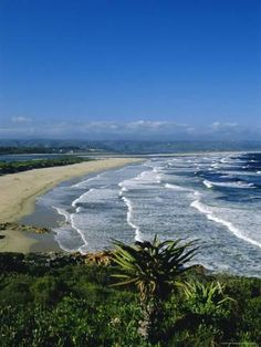 size: Photographic Print: Plettenberg Bay, Cape Province, South Africa by Fraser Hall : Artists Most Beautiful Beaches, Beautiful Places To Visit, Beautiful World, African Holidays, Foto Picture, Clifton Beach, Namibia, Beach Landscape, Adventure Is Out There