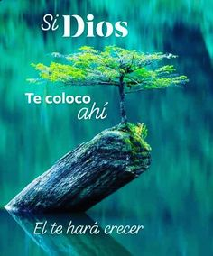 Proverbs Quotes, Faith Quotes, Bible Quotes, Spanish Inspirational Quotes, Spanish Quotes, Quotes En Espanol, Christian Images, Funny Spanish Memes, God Loves You