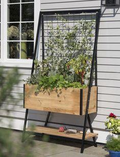 Sleek and Stylish Cedar Planter Box with Built-In Trellis