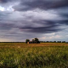 As the clouds roll in.  #snaptexas #instagramtexas #texasinstagram #Texas #igtexas #vanishingtexas #ig_countryside #texas_ig #rural #rsa_rural  #blueridgetexas texas #jj_lonestartx  #rsa_rurex #rsa_outdoors #ipulledoverforthis #renagade_rural #trb_members