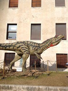 Un allosaururus