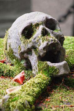 At the Brugge cemetery, Belgium. Memento mori closeup by [ henning ], via Flickr