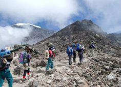 Kilimanjaro Climbing UMBWE ROUTE Africa safari