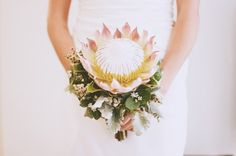 Just like Thumbelina movie when she must marry the mole! It's called a king protea bouquet Single Flower Bouquet, Flower Boquet, Protea Bouquet, Protea Flower, Protea Wedding, White Wedding Flowers, Wedding Bouquets, Best Wedding Favors, Wedding Ideas