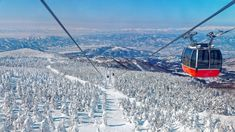 Winter activities abound in the Tohoku region in Japan. Travelers can enjoy festivals, skiing and sightseeing in the snow. Japan Travel Guide, Helicopter Tour, Cross Country Skiing, Park City, Great Places, Travel Photography, National Parks, Scenery, Places To Visit