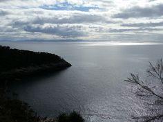 Fluted Cape, Bruny Island, Tasmanië, Australië #tasmania #tassie #australia #roadtrip