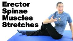 Your erector spinae muscles, or your extensor muscles, help extend and rotate your back. So the best way to stretch them is to curl your body forward and do rotational movements. See Doctor Jo's blog post about this at: http://www.askdoctorjo.com/content/erector-spinae-muscles-stretches