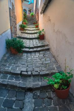 Szentendre is a popular Danube bend day trip from Budapest. Find out why you should visit Szentendre for a day. Visit Budapest, Budapest Travel, Travel Around The World, Around The Worlds, European City Breaks, Stone Street, Hungary Travel, Backyard Retreat, European Destination