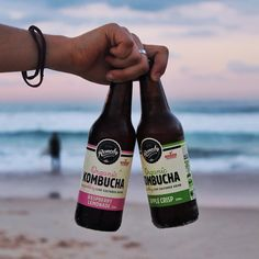 Kombucha Culture, Beer Bottle, Lemonade, Drinking, Raspberry, Remedies, Organic, Instagram Posts, Lifestyle