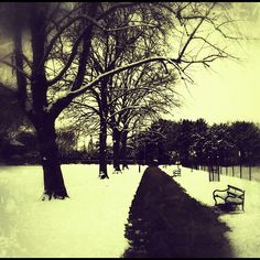 Fortune Green in the snow via Emily Meacher Snow, Celestial, London, Sunset, Places, Green, Outdoor, Sunsets, Outdoors