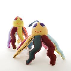 Rainbow Octopus from Cambodia