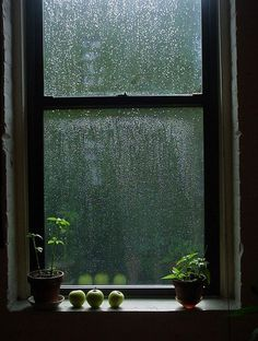 Being inside on a rainy day watching raindrops run down the window.