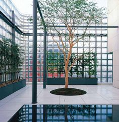 Maison Hermès, Tokyo, Japan, by Renzo Piano Architecture Du Japon, Education Architecture, Commercial Architecture, Space Architecture, Contemporary Architecture, Architecture Diagrams, Architecture Portfolio, Renzo Piano, Tokyo Ville