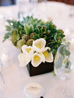potted plants--also, could use small potted herbs (one per guest) as favors.  put them all in a wooden planter to form the centerpiece