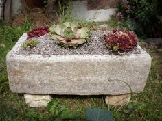 Make your own hypertufa stone trough