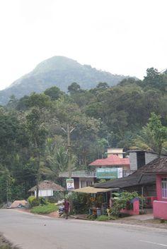 Thekkady, #Kerala