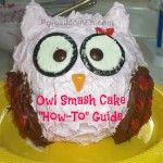 This Owl Smash Cake is an adorable first birthday cake perfect for an owl themed birthday party or a cake smash photography session! First Birthday Cakes, 1st Birthday Parties, Owl Smash Cakes, Owl 1st Birthdays, Marshmallow Fondant, Cake Smash Photography, Matilda, Frugal, Cake Decorating
