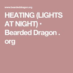 HEATING (LIGHTS AT NIGHT) • Bearded Dragon . org