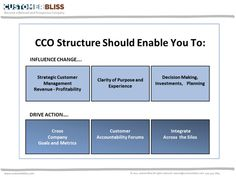 Structuring the Chief Customer Officer Role and Team