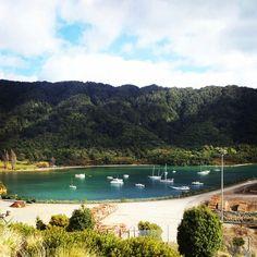 Marlborough Sounds, New Zealand Marlborough Sounds, Day Trip, New Zealand, River, Outdoor, Outdoors, Outdoor Games, The Great Outdoors, Rivers