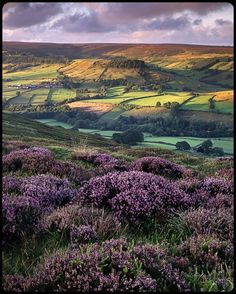 Rosedale, New Yorkshire, England