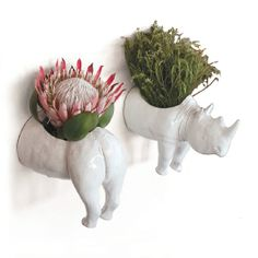 Give It Horns! This quirky planter makes a beautiful plant holder and serves as a reminder to contribute to your favourite save-the-rhino charity, too. per pair, Ceramic Factory The Oprah Magazine Africa Craft, Ceramic Wall Planters, Save The Rhino, African Theme, Inside Plants, Interior Garden, Flower Planters, Plant Holders, Wall Design