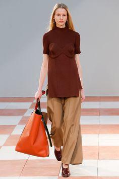 Céline - Fall 2015 Ready-to-Wear - Look 30 of 38