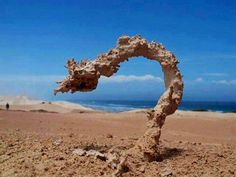 Sand after its struck by lighting. Awesome!!