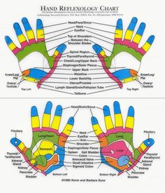 Hand Reflexology Chart I love this chart! I will be presenting to the Chandler Senior Center on How to Stay Healthy with Hand Reflexology. A High 5 for Health !!!