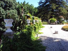 Jardim do Museu do Traje ( Lisboa )