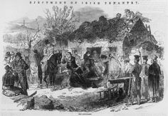 The Real Irish American Story Not Taught in Schools - Zinn Education Project The Irish Potato Famine, Irish Famine, American Story, Irish American, Irish Potatoes, Images Of Ireland, The Secret History, Old Things