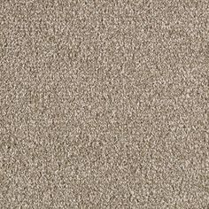 Lowe's Home Improvement New Carpet, Lowes Home Improvements, Oysters, Shell, Indoor, Flooring, Home Decor, Interior, Homemade Home Decor