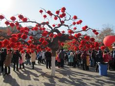 Chinese New Year celebrations in #beijing. #china #newyear #red