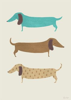 Art print animal art dog poster dachshund nursery by agrapedesign