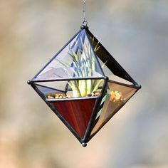 Pyramid Orb Air Plant Planter with Variegated by OriskanyGlass, $35.00