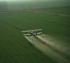 "Monsanto's New 'Agent Orange' – Are You Eating, Breathing & Drinking It?    In a groundbreaking study published in Analytical and Bioanalytical Chemistry last month, glyphosate, the active ingredient in the herbicide ""Roundup,"" is flowing freely into the groundwater in areas where it is being applied. The researchers found that 41% of the 140 groundwater samples taken from Catalonia Spain, had levels beyond the limit of quantification – indicati..."